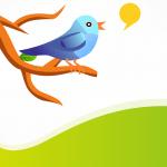 Cómo conseguir seguidores en Twitter. Truco para ganar seguidores